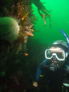 John comes face to face with a sea urchin