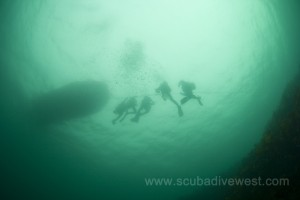 Deeply enjoyable diving