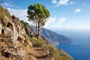 Hiking Camino