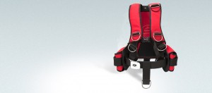 It's RED! Two weight pockets with buckle are included.
