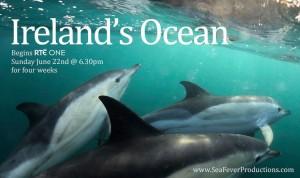 Ireland's Ocean