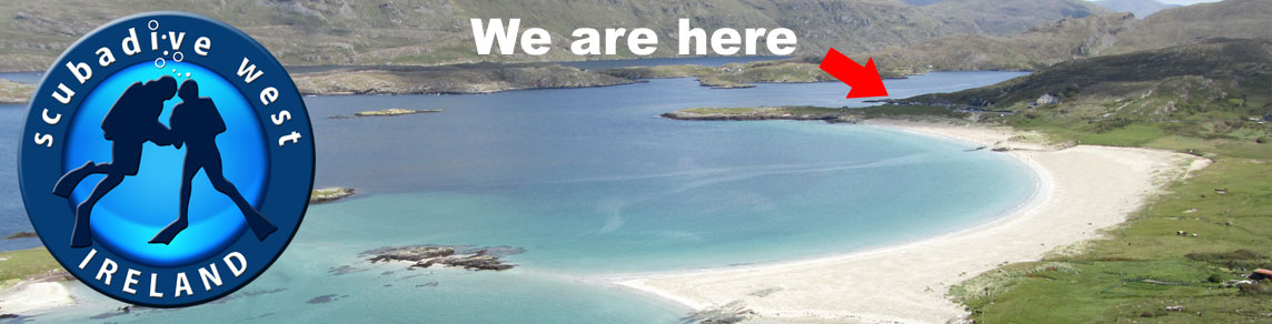 Scubadive West Dive Blog